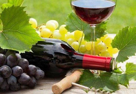Hướng dẫn bảo quản rượu vang đỏ tại nhà