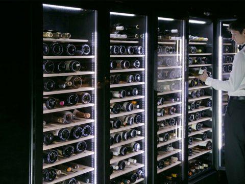Tư vấn mua tủ ướp rượu vang giá rẻ tại Hà Nội